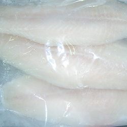 pangasius_fileto.png
