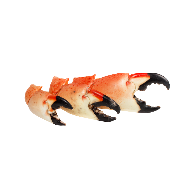 crab-claws.png