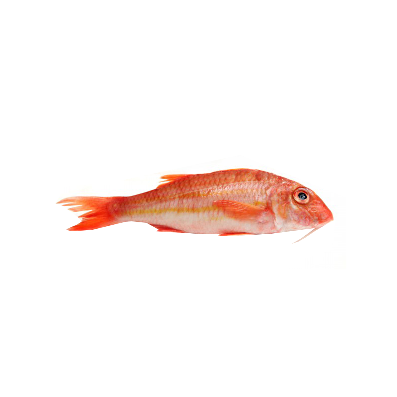 red-mullet.png